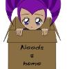 Needs a home