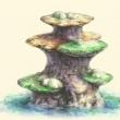image aquagarden3-jpg